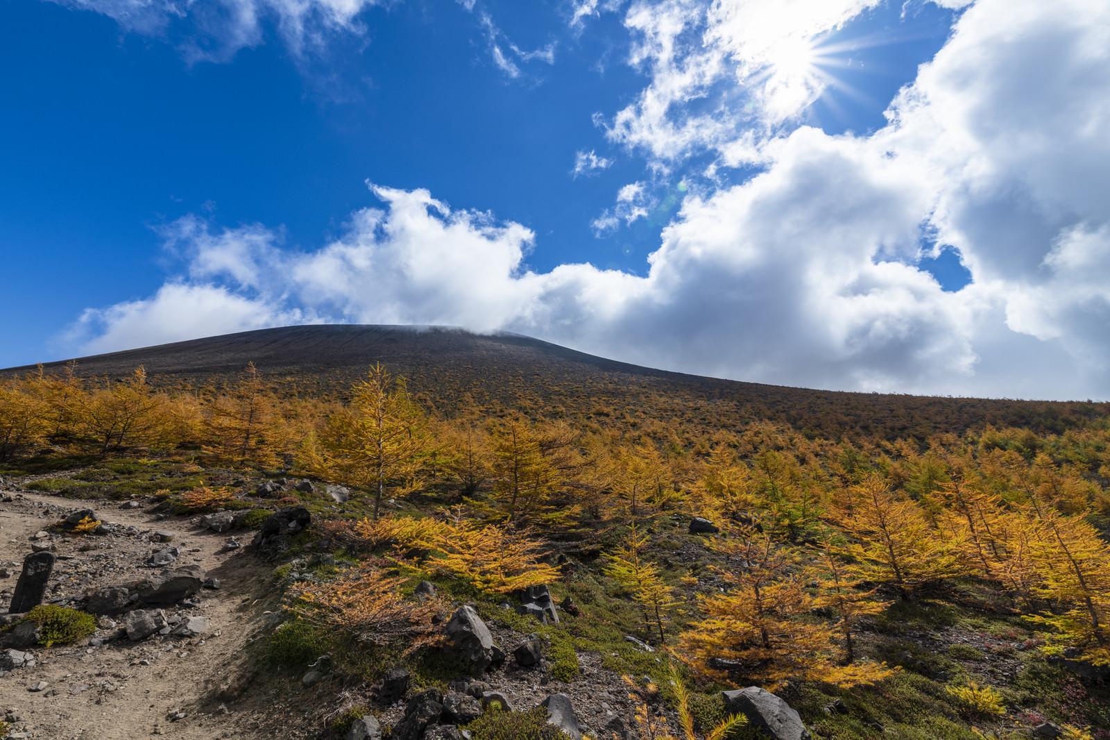 「雲と紅葉に彩られる浅間山本体」の写真