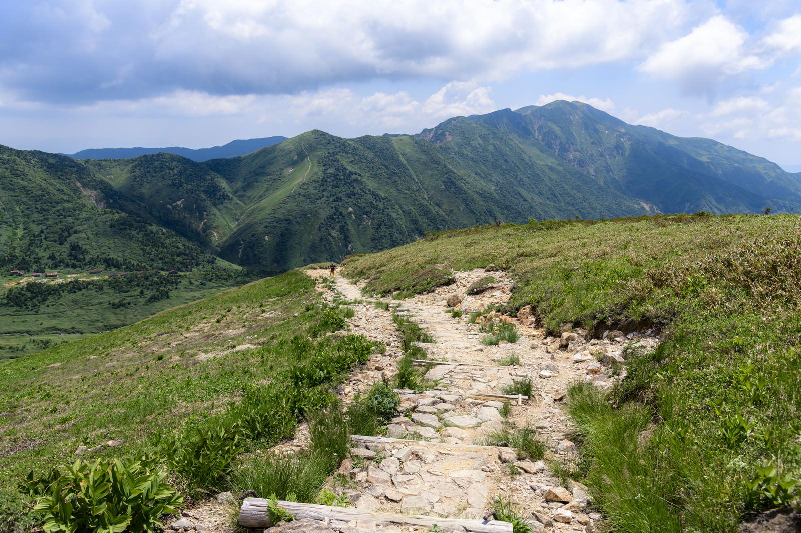 「弥陀ヶ原へと向かう道から見える別山(白山)」の写真