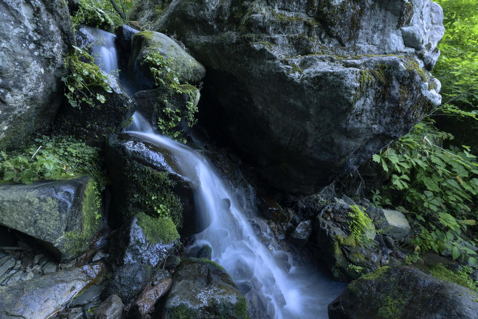 「火打山を流れる渓流」の写真