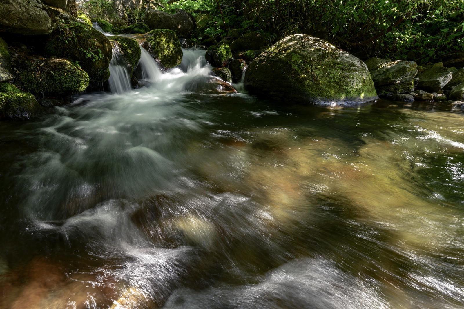 「火打山を流れる黒沢の渓流」の写真