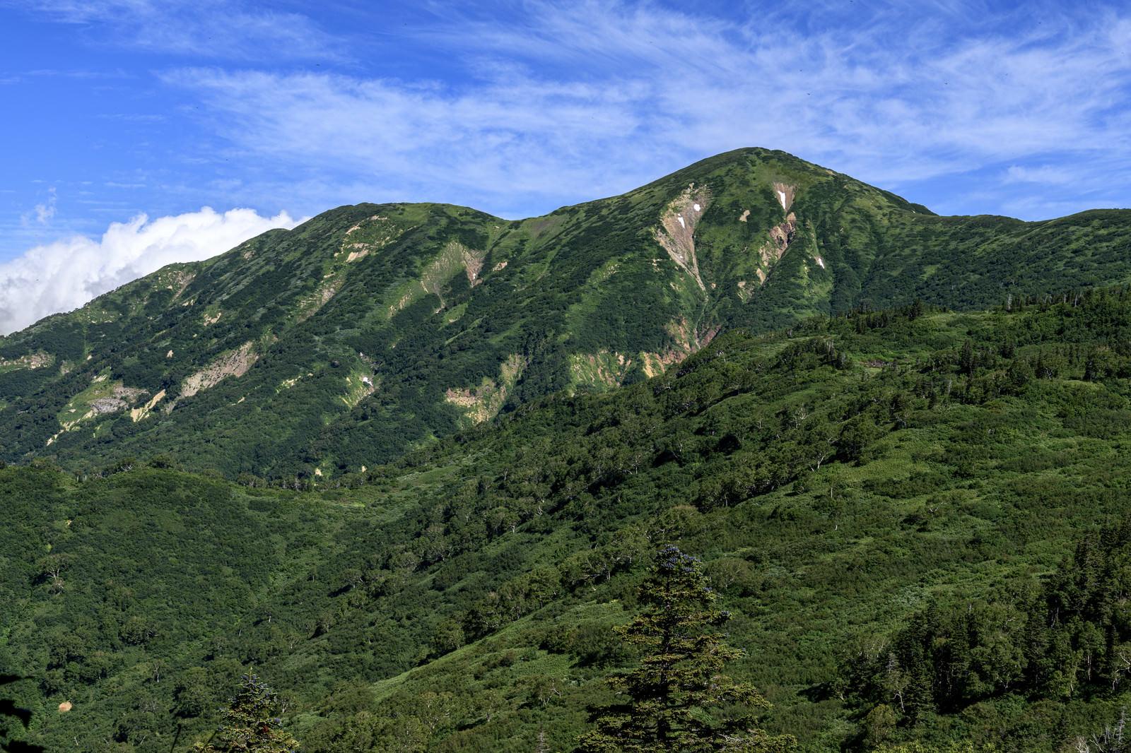 「頚城山塊最高峰の火打山(ひうちやま)」の写真