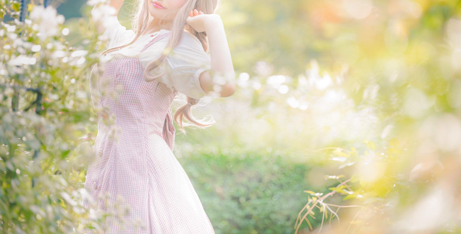 「木漏れ日に包まれる森娘」の写真[モデル:石投げて美奈代]