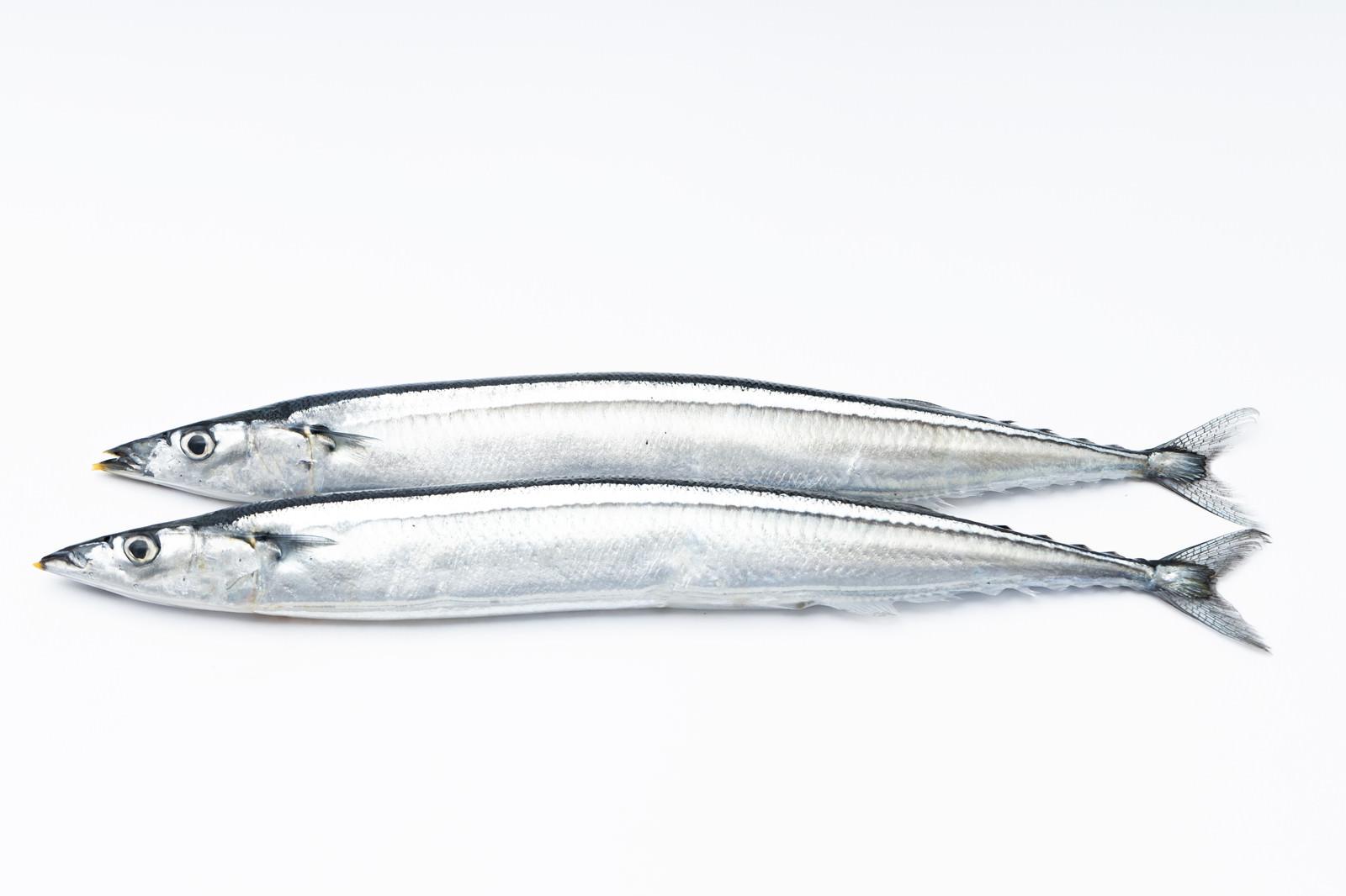 「秋刀魚(さんま)二匹」の写真