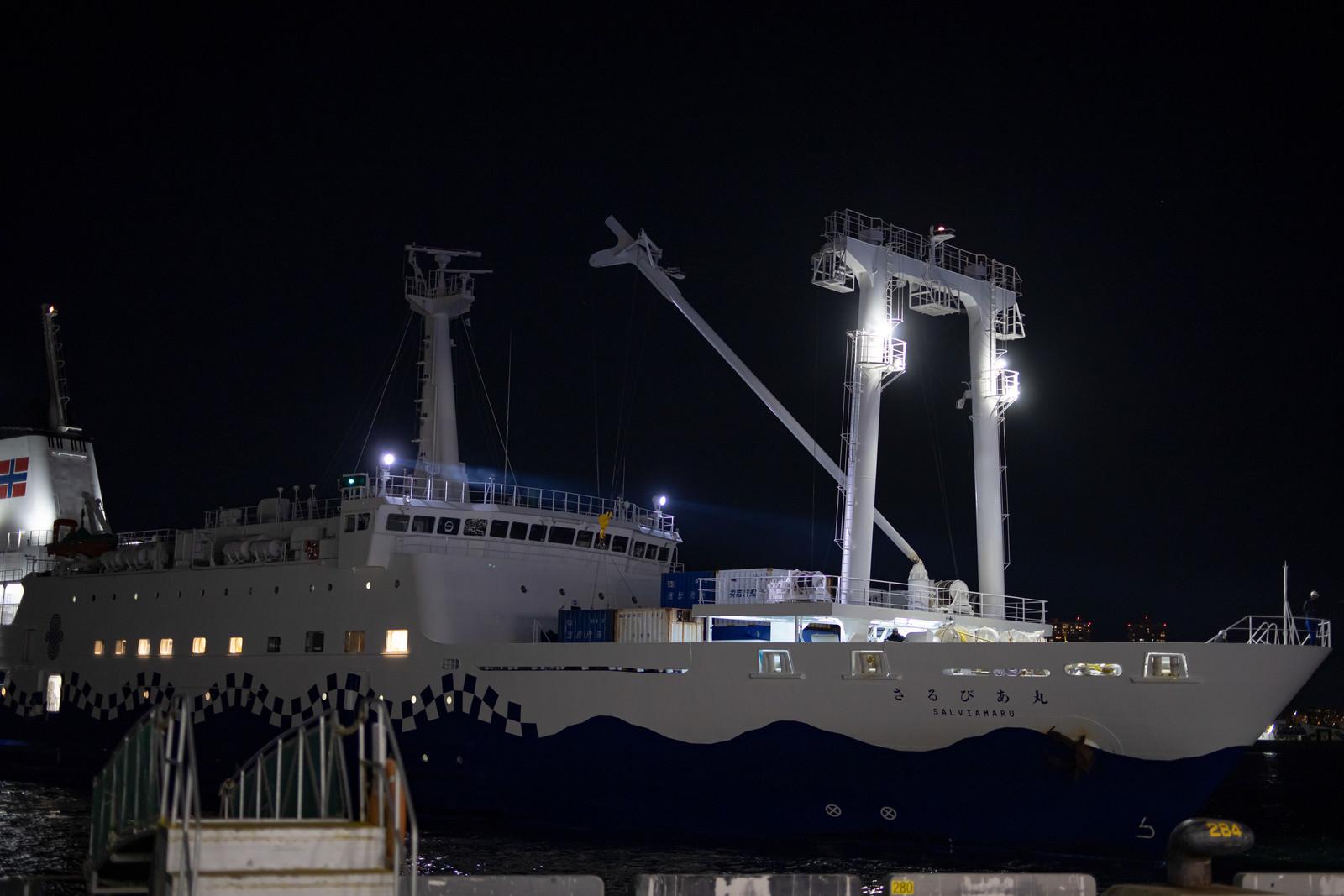 「夜間に着港するさるびあ丸」の写真