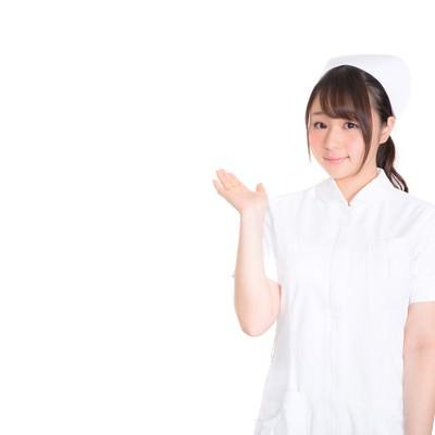 「案内をする美人看護師」の写真素材
