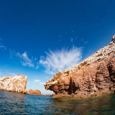 アシカの棲む島「LOS ISLOTES」の写真