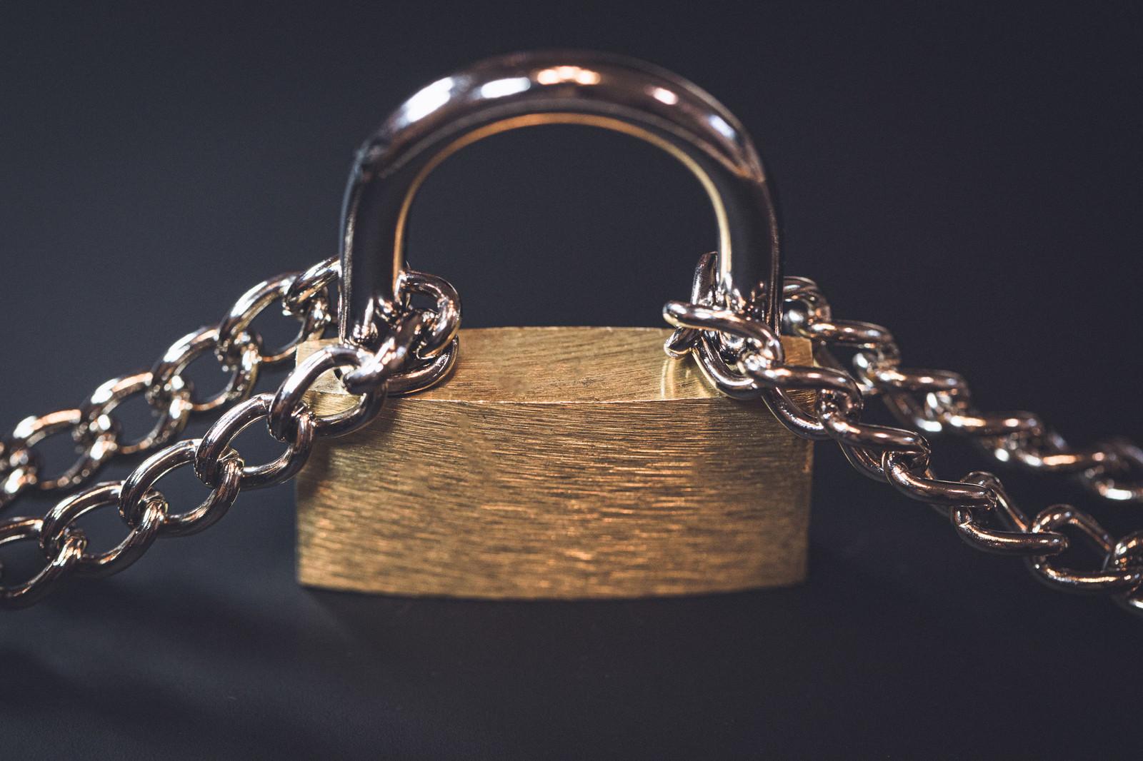「2本の鎖で繋がれた南京錠」の写真