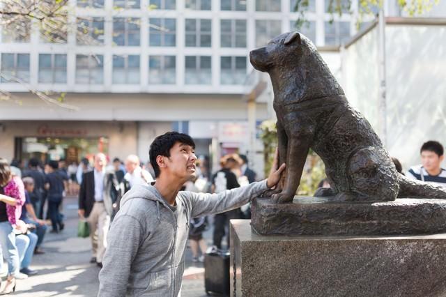 女性を口説けず犬の銅像に慰めてもらうナンパ師の写真