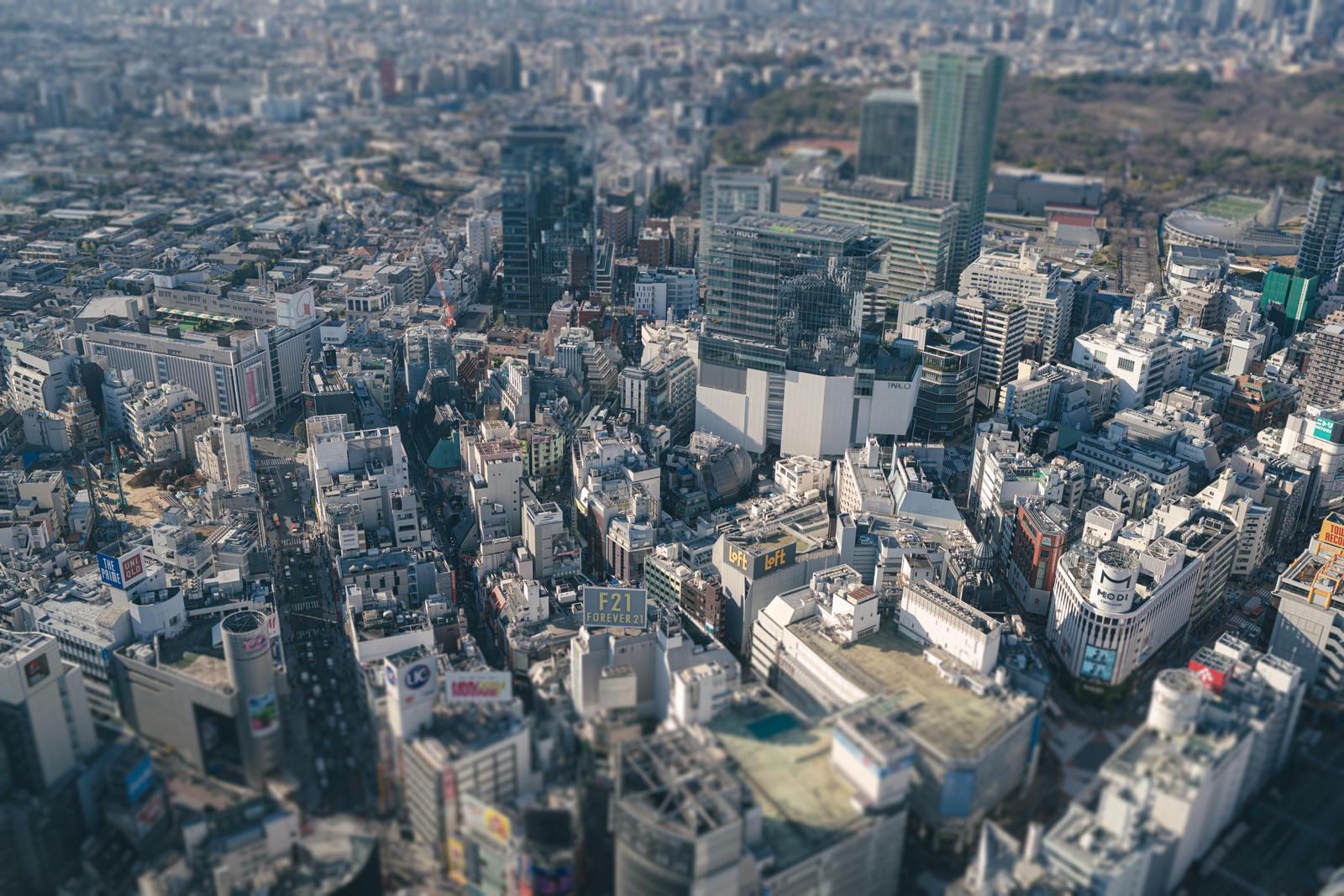 「渋谷の都市景観(チルトシフト)」の写真