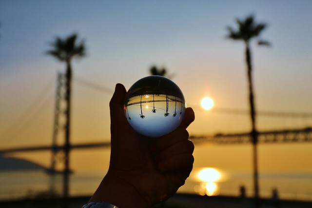 ヤシの木と水晶玉の写真