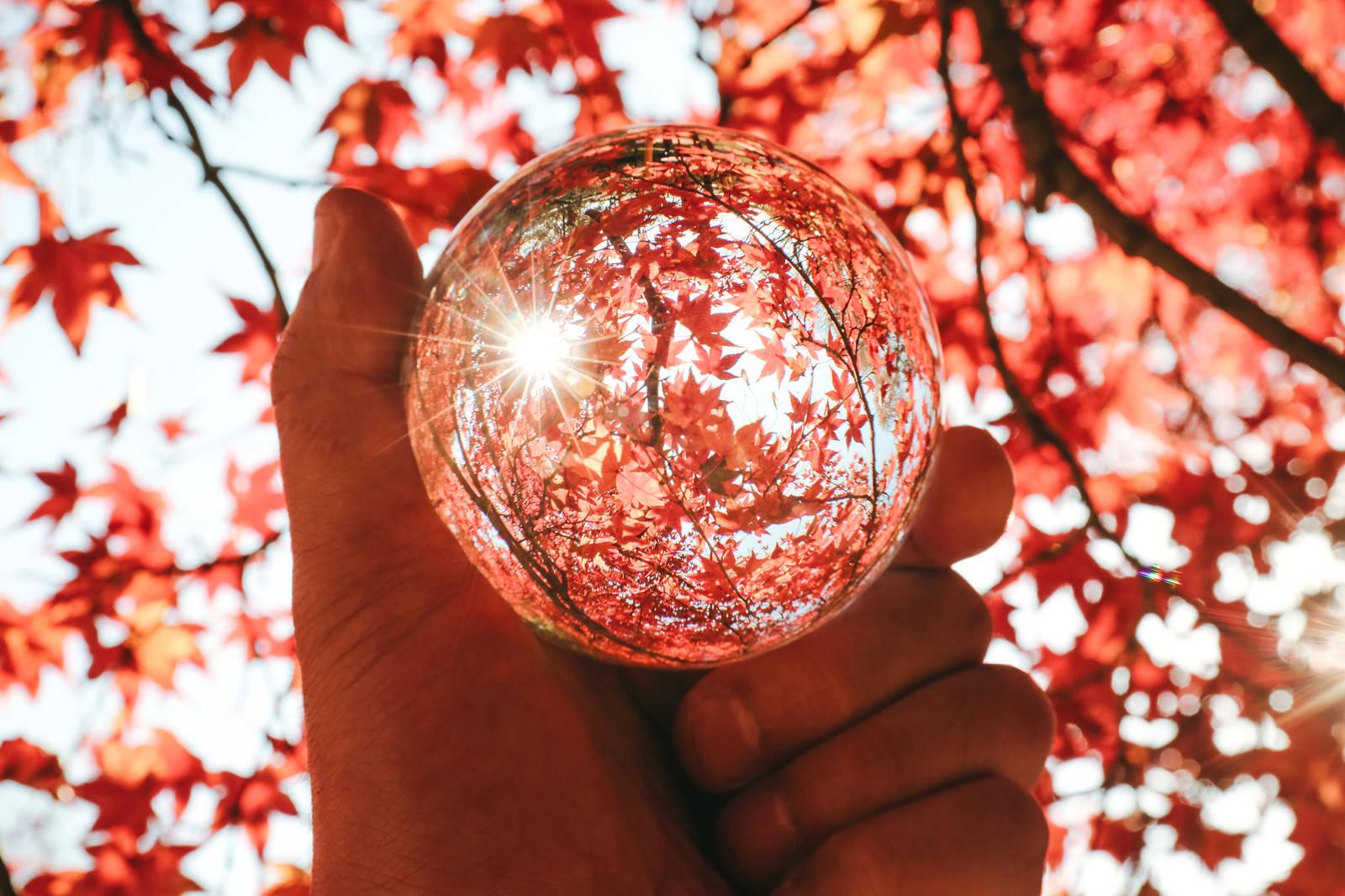 「水晶球から見る紅葉」の写真