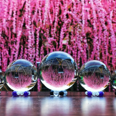 枝垂れ梅と並ぶガラス玉の写真