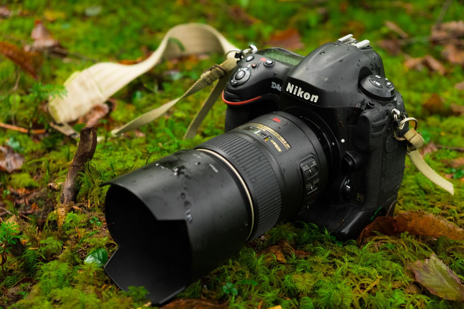 「自然の中の撮影で水滴がついた一眼レフカメラ(D4S)」の写真