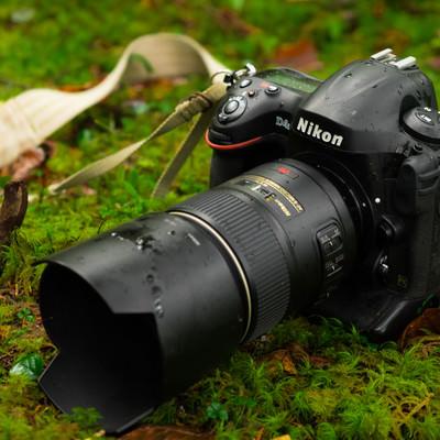 自然の中の撮影で水滴がついた一眼レフカメラ(D4S)の写真