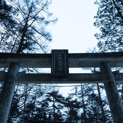「白根大明神の鳥居」の写真素材