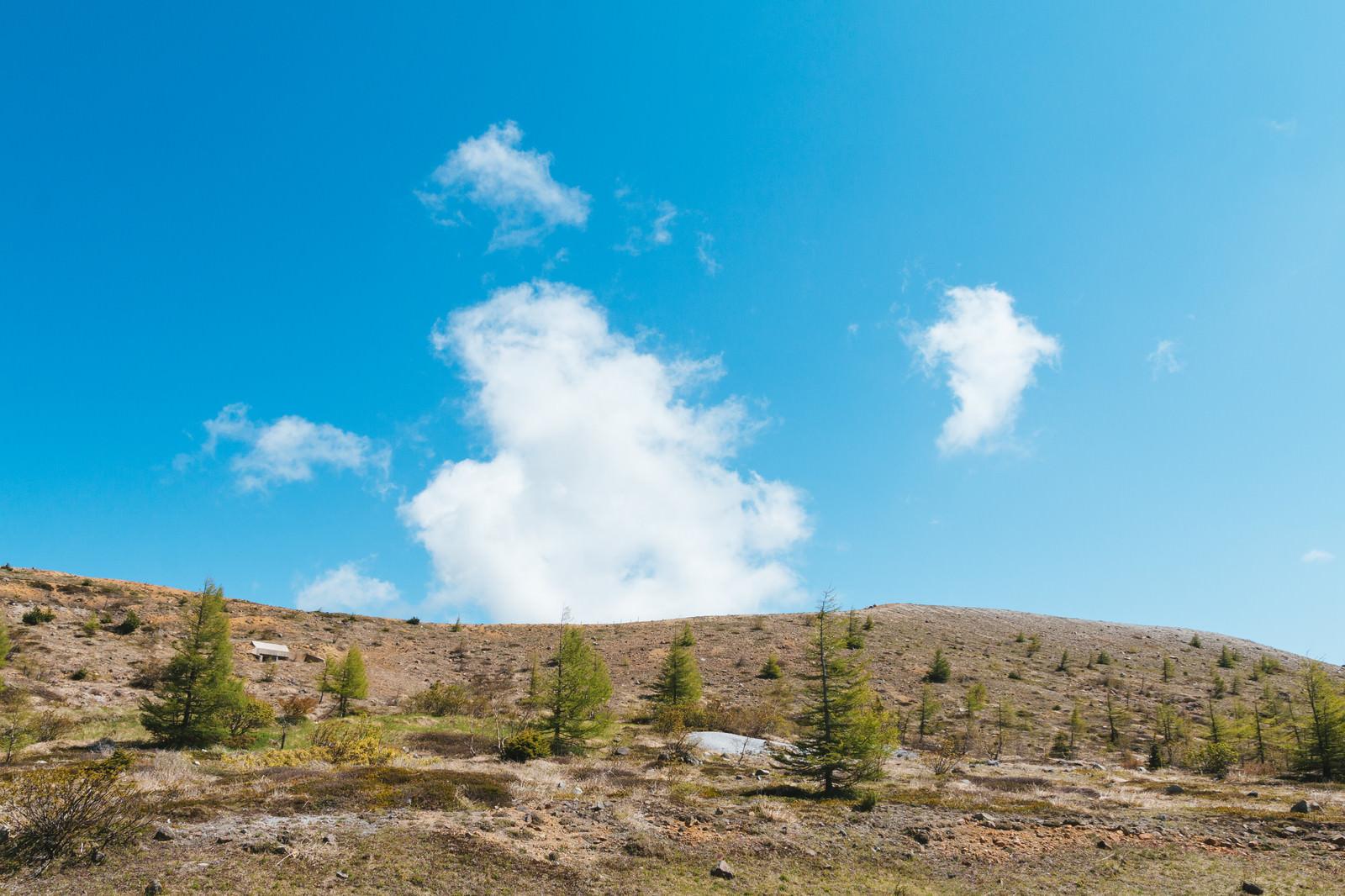 「くさきがポツポツ生える白根山くさきがポツポツ生える白根山」のフリー写真素材を拡大