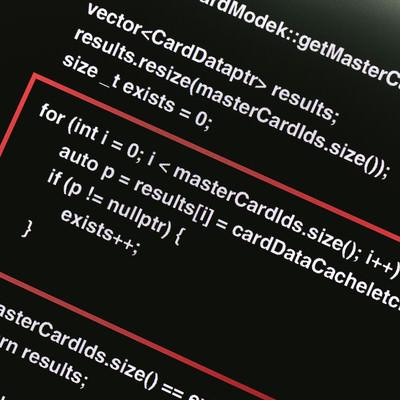 「ソースコードを開示し説明箇所を赤く囲む」の写真素材