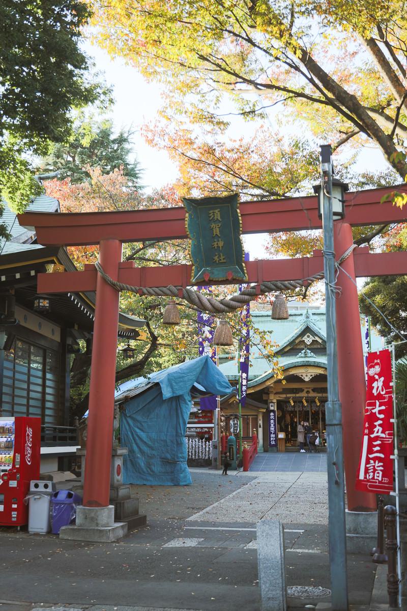 「東京四谷須賀神社の鳥居」の写真