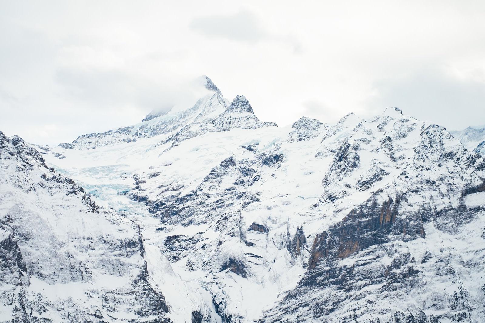「グリンデルワルトの雪山」の写真