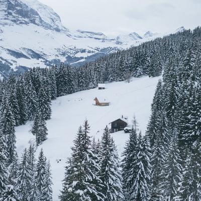 樹木に囲まれる山小屋(雪山)の写真
