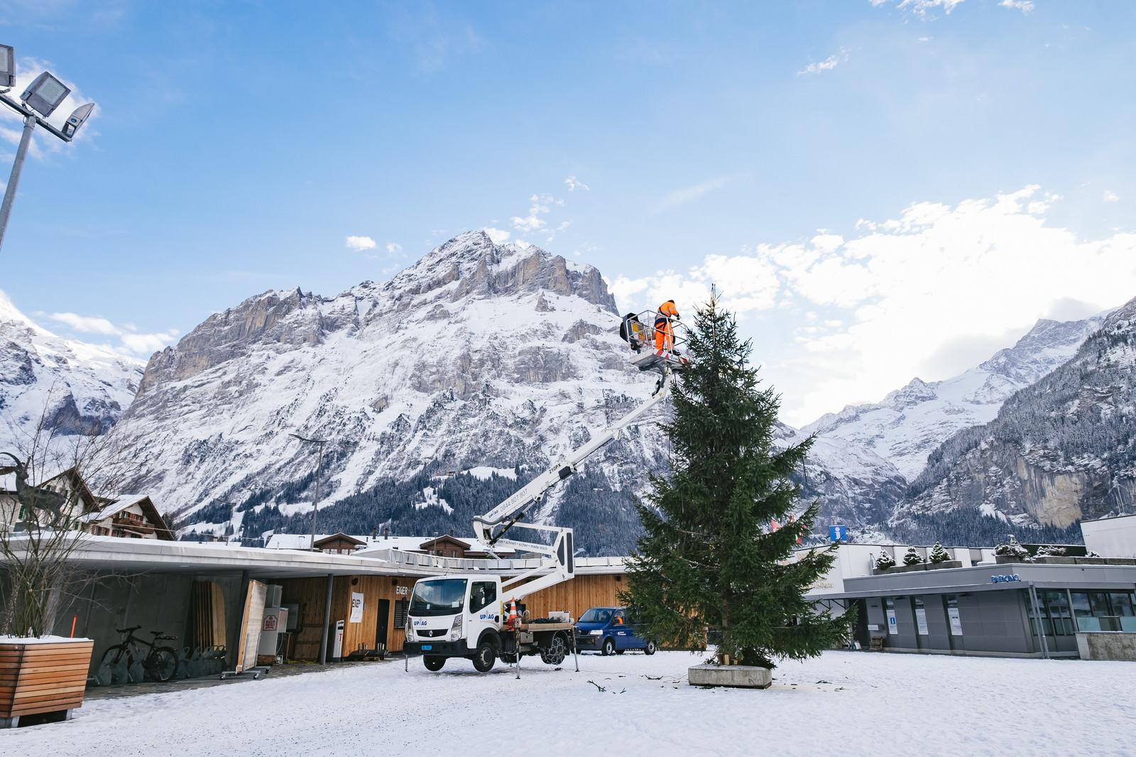 「クリスマスツリーの準備中(スイス)」の写真