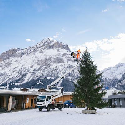 クリスマスツリーの準備中(スイス)の写真
