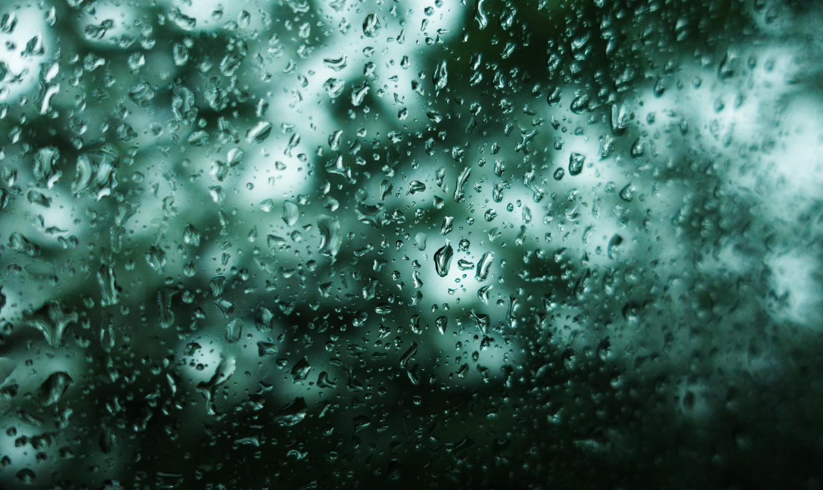 「不穏な雨(深い森の中を走る窓ガラスの水滴)」の写真