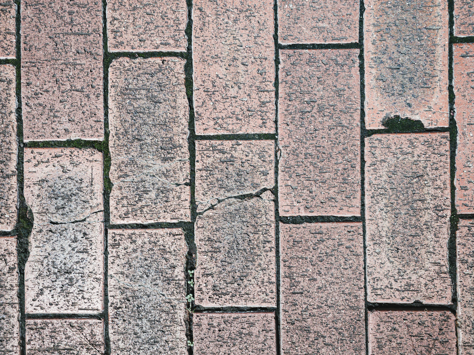 「溝に入り込んだ土が踏み固められたレンガ(テクスチャ)」の写真