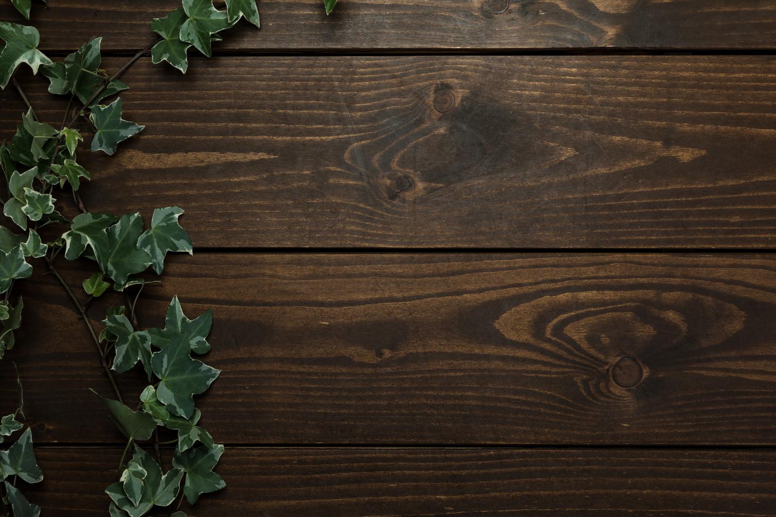 「木目調のテーブルと伸びる蔦」の写真