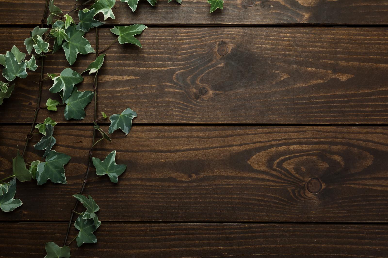 「木目のテーブル上の蔦」の写真