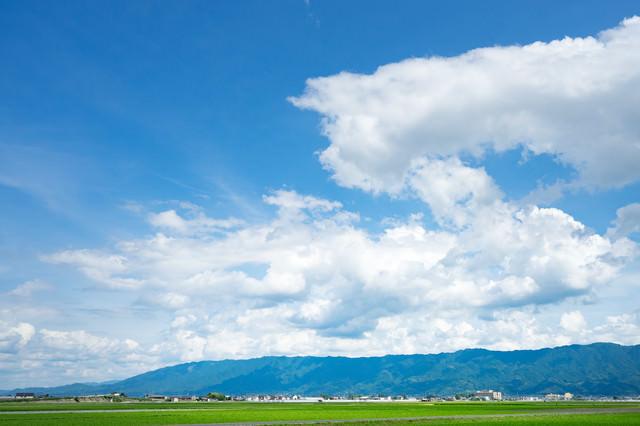 広大で豊かな農地筑後平野(大刀洗町)の写真