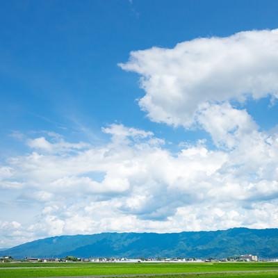 「広大で豊かな農地筑後平野(大刀洗町)」の写真素材