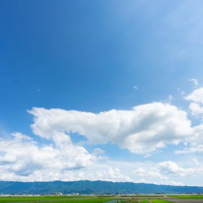 「農作物がよく育つ筑後平野の大刀洗町」の写真素材