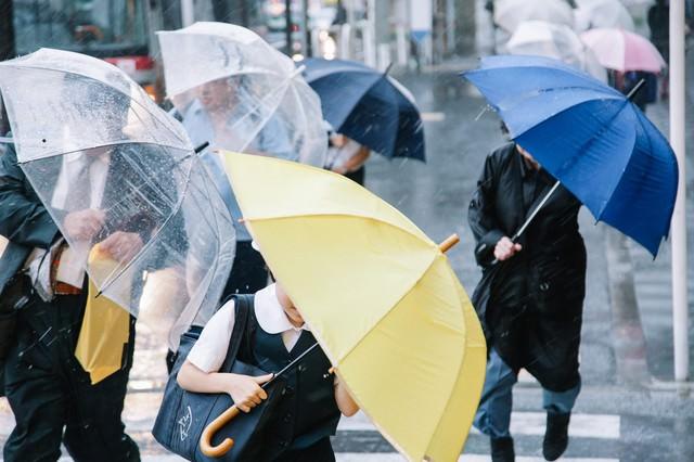 傘を斜めにするくらい横なぐりの雨の写真