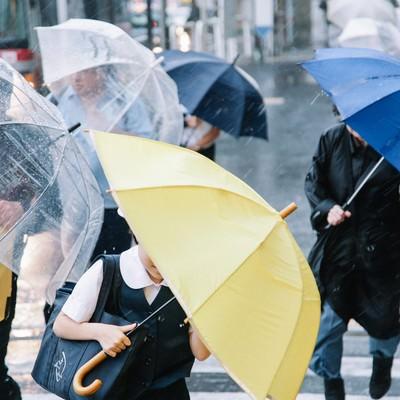 「傘を斜めにするくらい横なぐりの雨」の写真素材