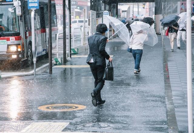 大雨と強風の中、出社する社畜ビジネスマン(びしょ濡れ)の写真