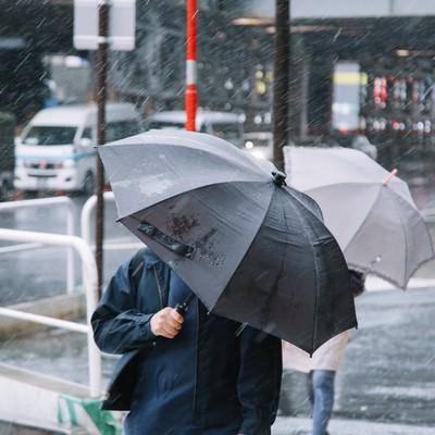 台風の日に傘をさす人の写真