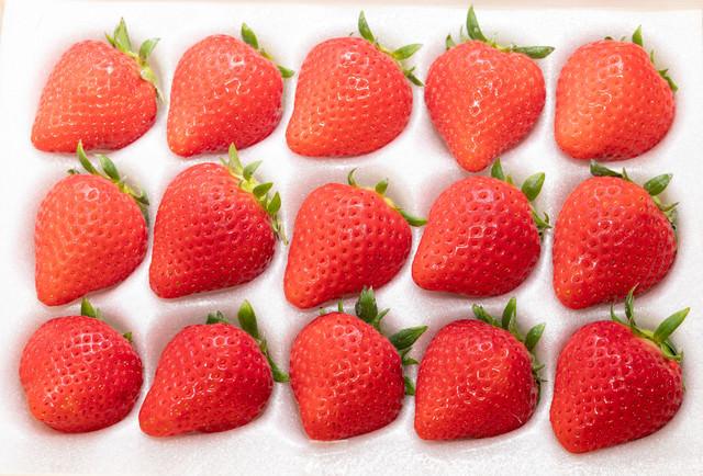 整った形の高級苺の写真