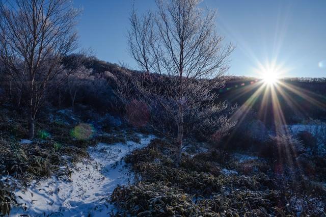 赤城山小沼の夜明けの写真