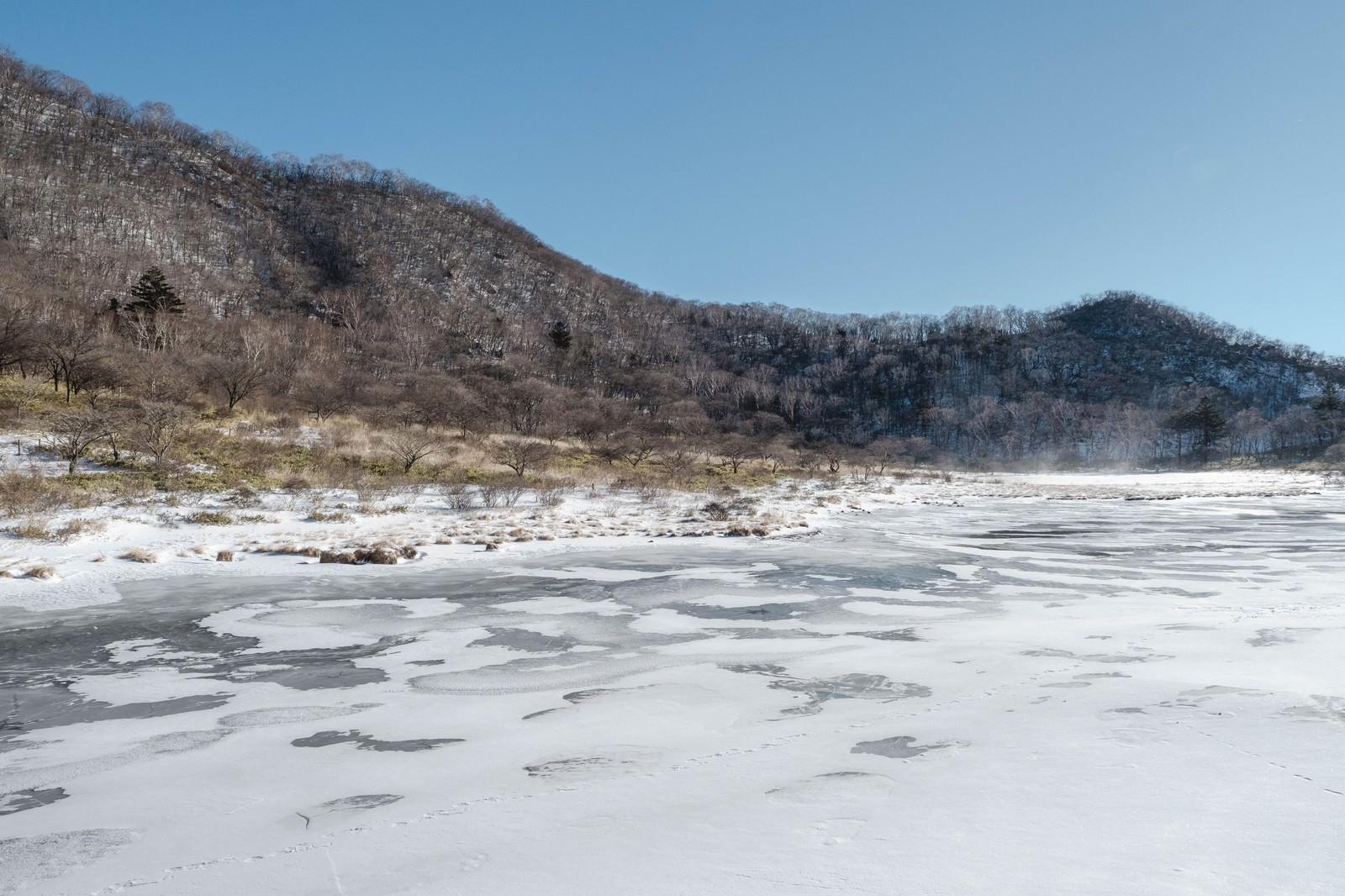 「赤城山覚満淵(かくまんぶち)の凍った湿原」の写真
