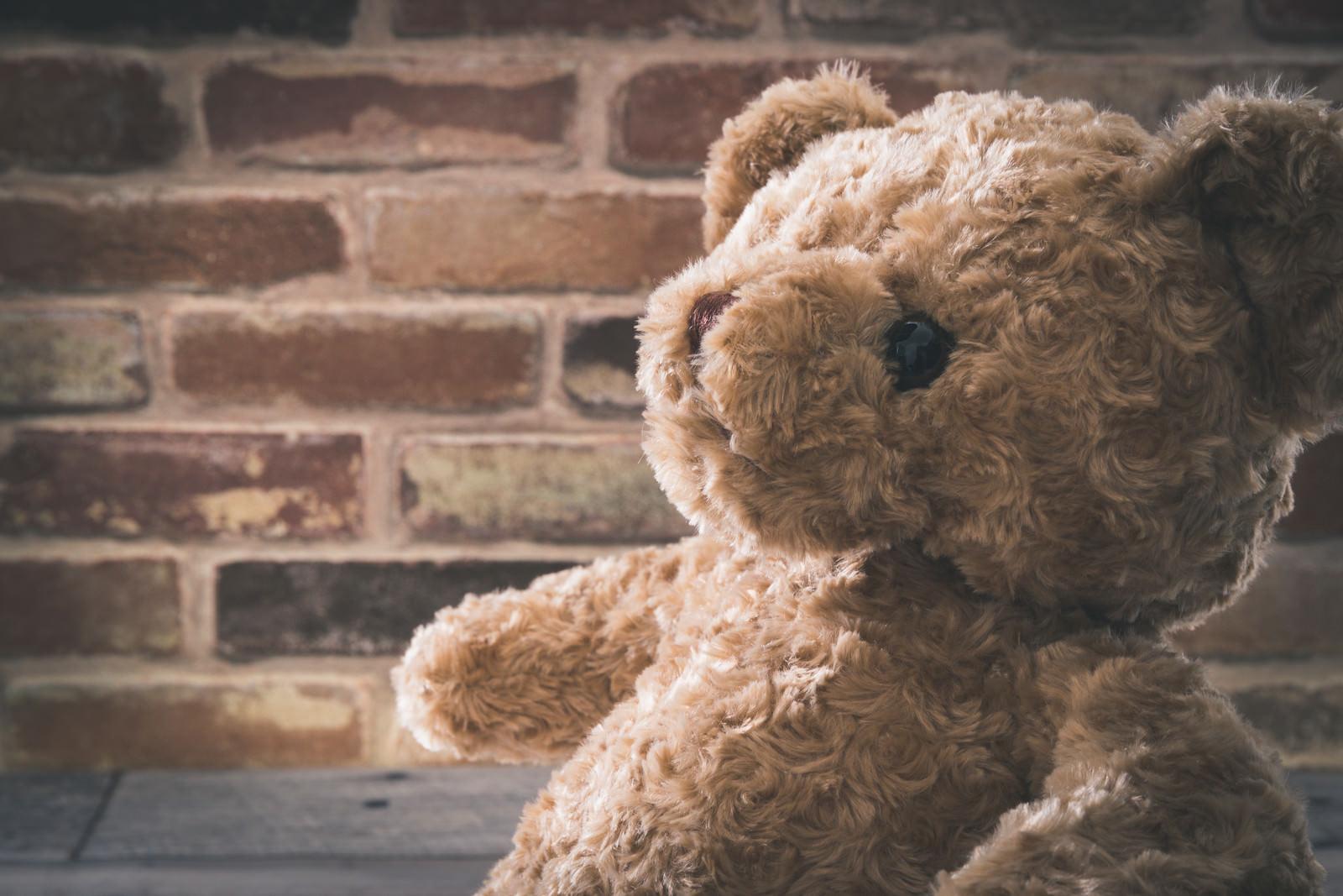 「シリアスな熊のぬいぐるみ」の写真