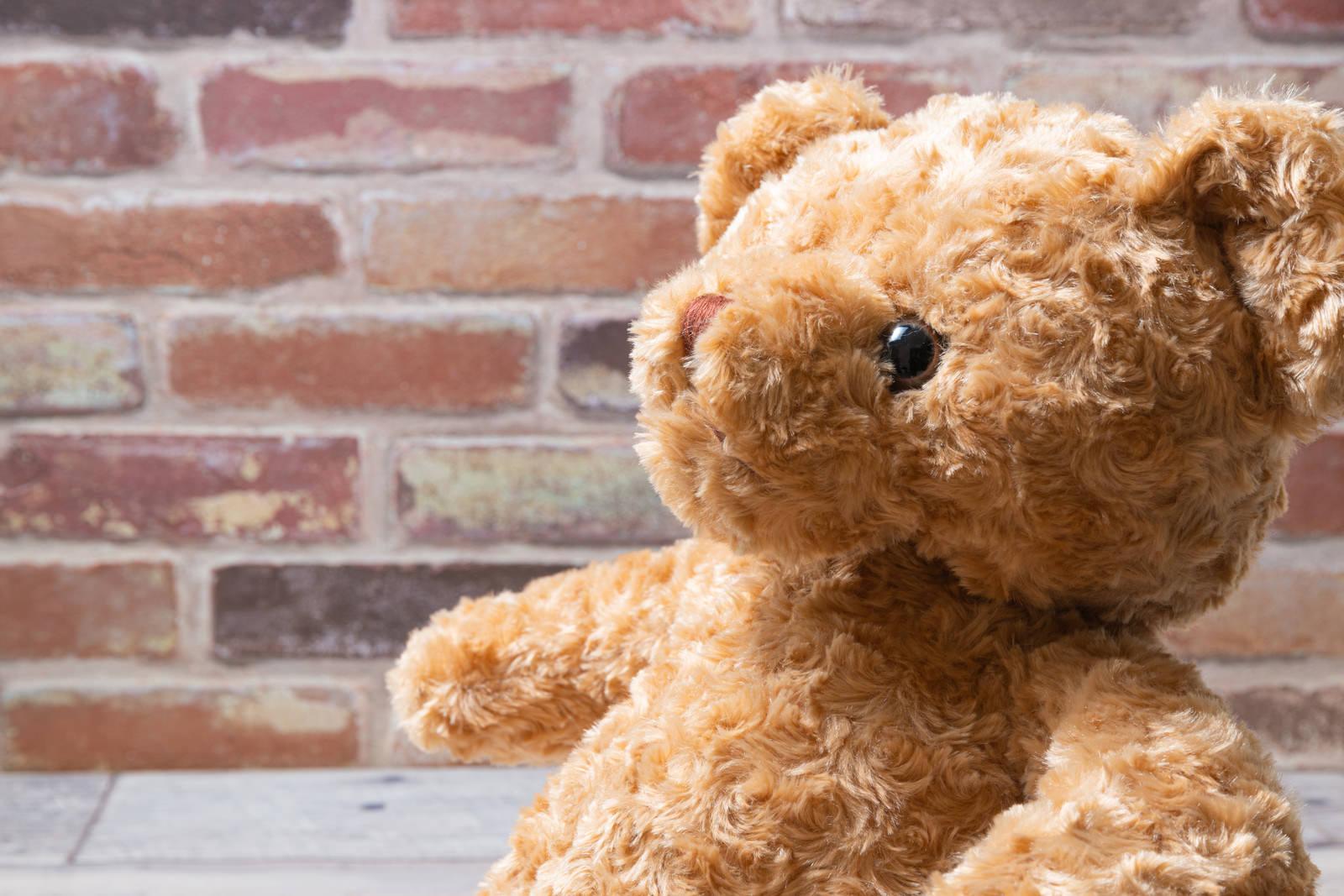 「話を聞くクマさん」の写真