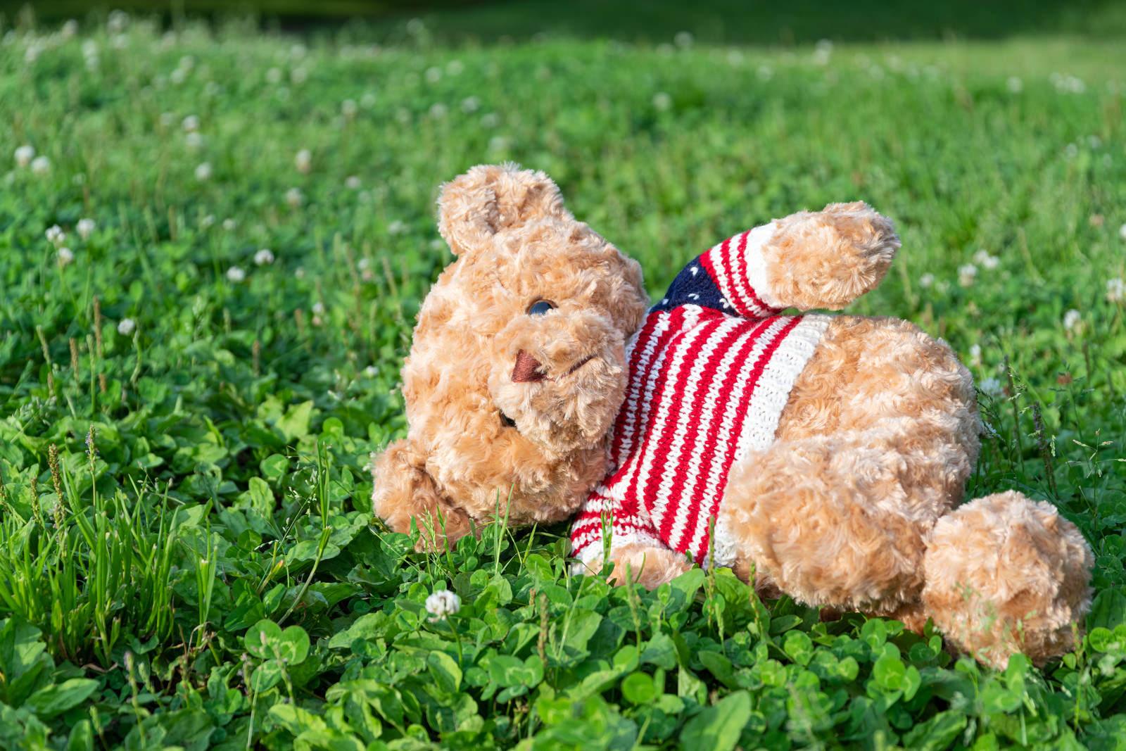 「野原で寝そべるくまのぬいぐるみ」の写真