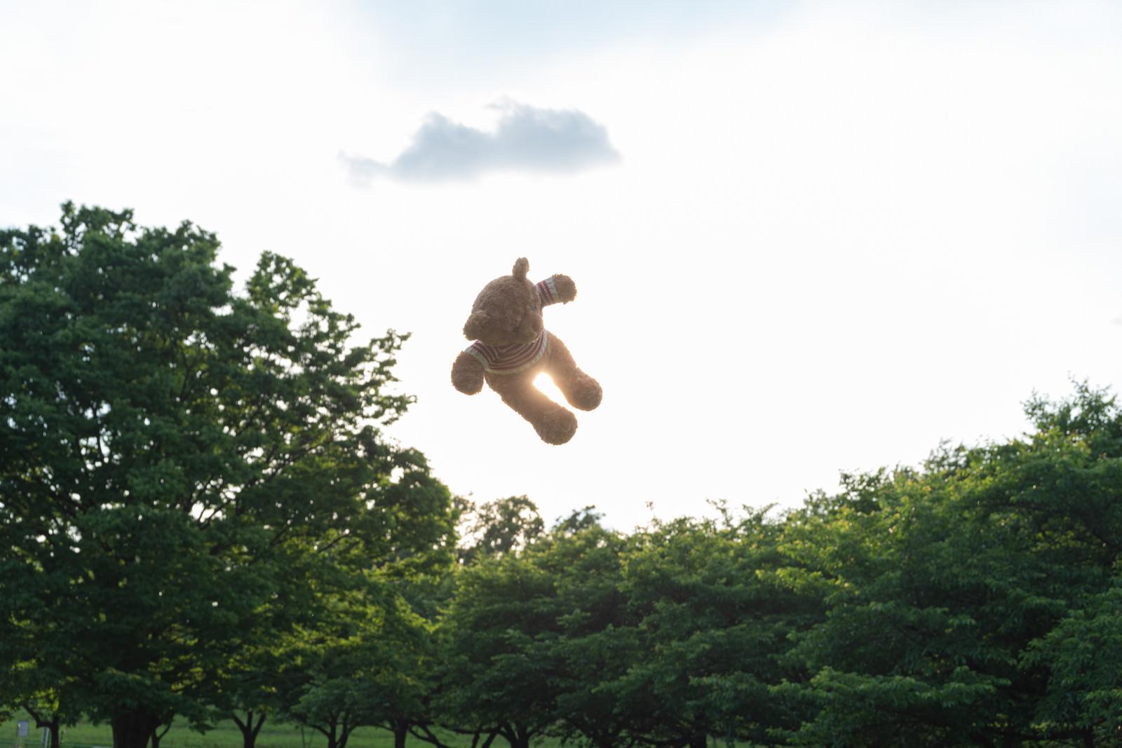 「空中クマ」の写真