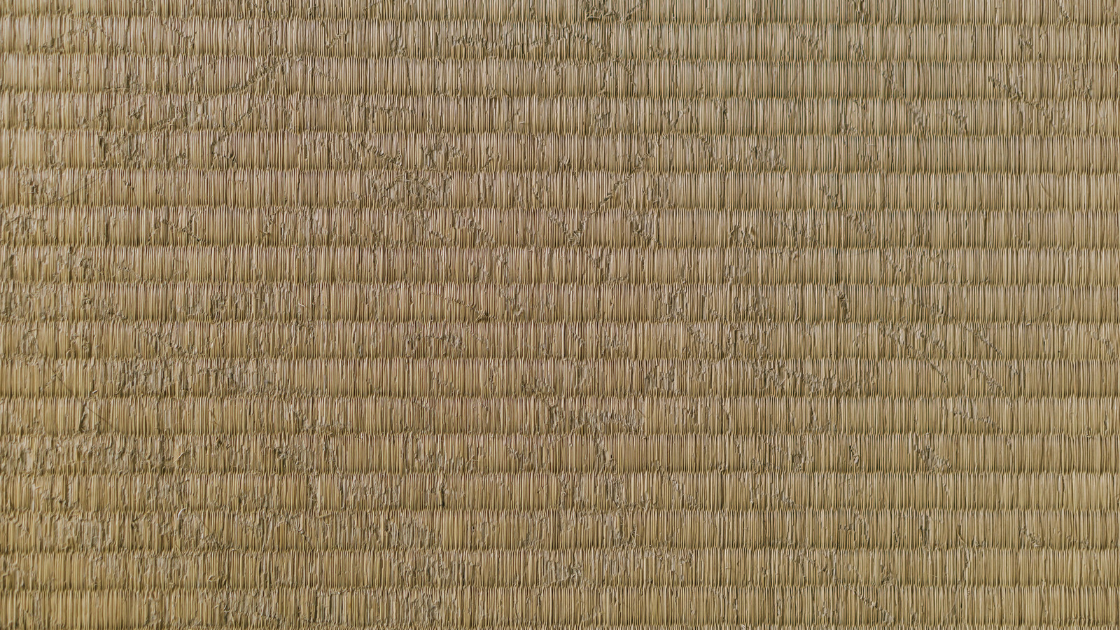 「猫に引っ掻かれた畳」の写真