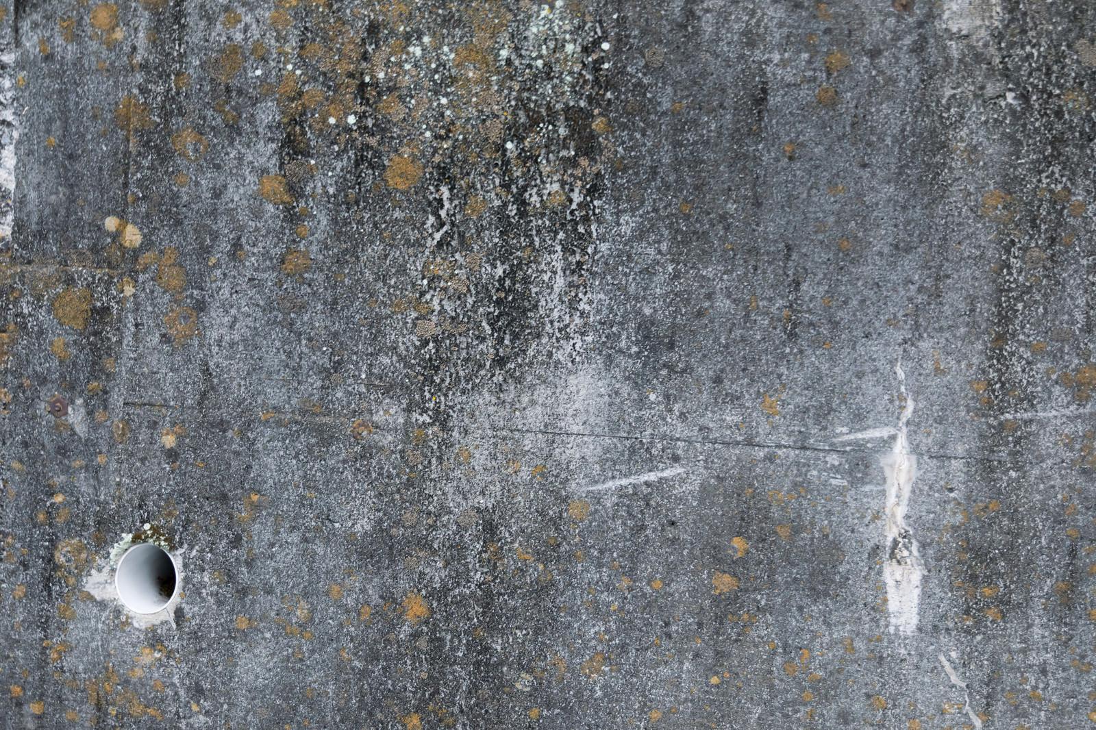 「排水管とコンクリートの壁」の写真