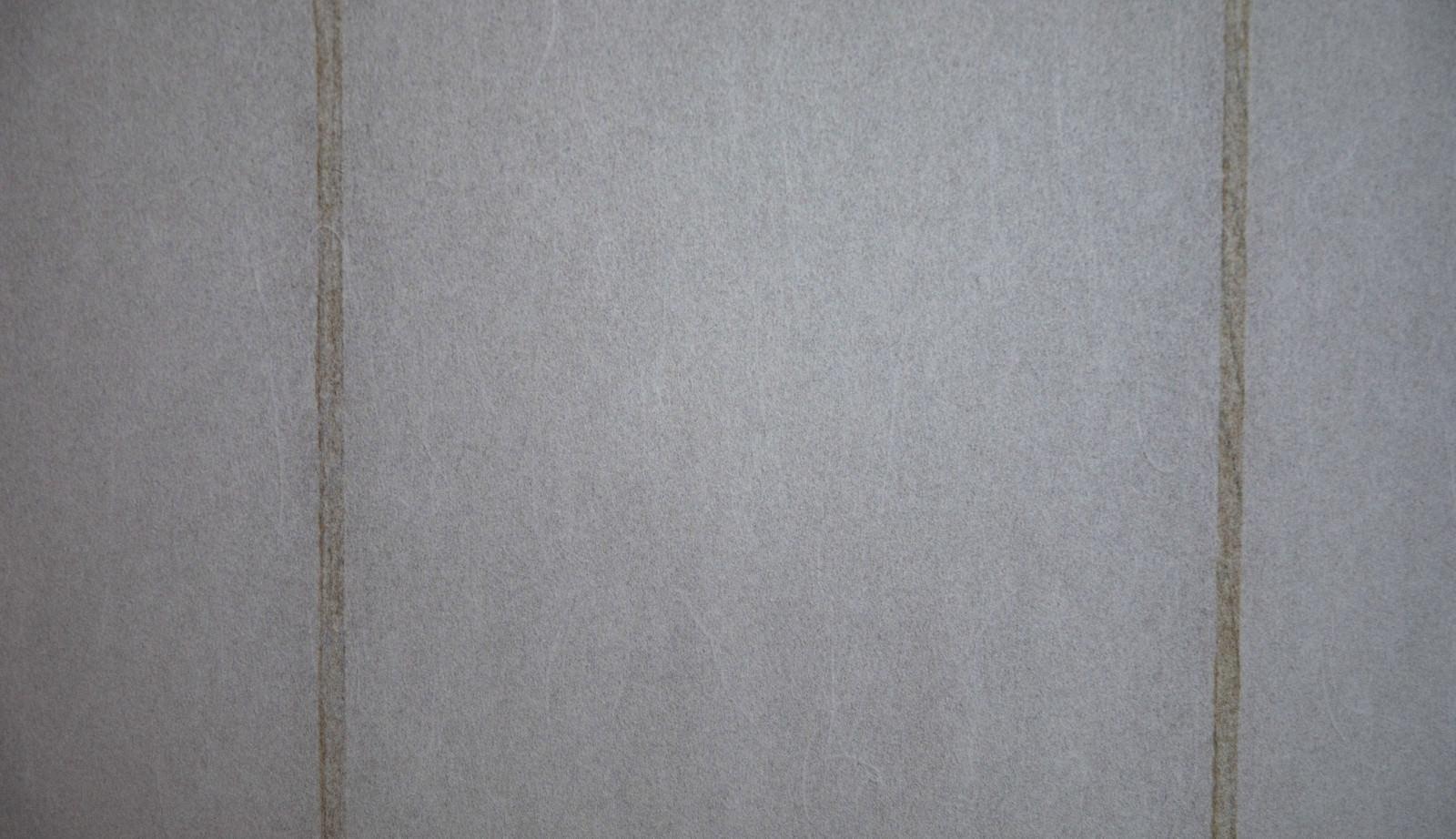 「障子(テクスチャ)」の写真