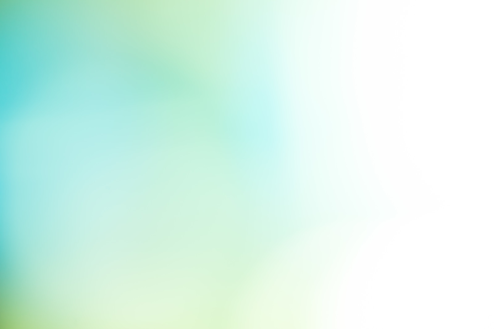 「淡い緑の光」の写真