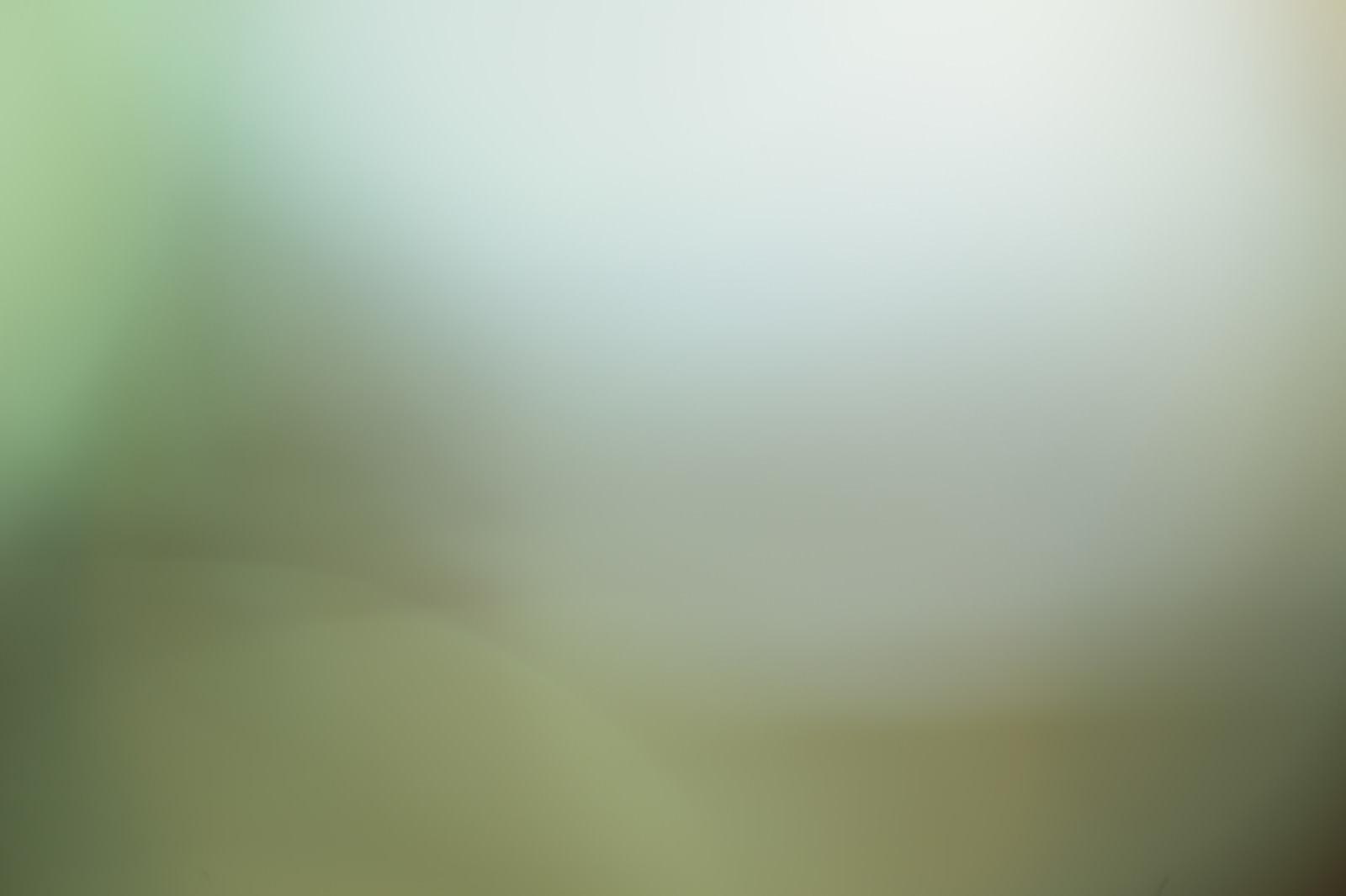 「薄暗い濁った背景」の写真