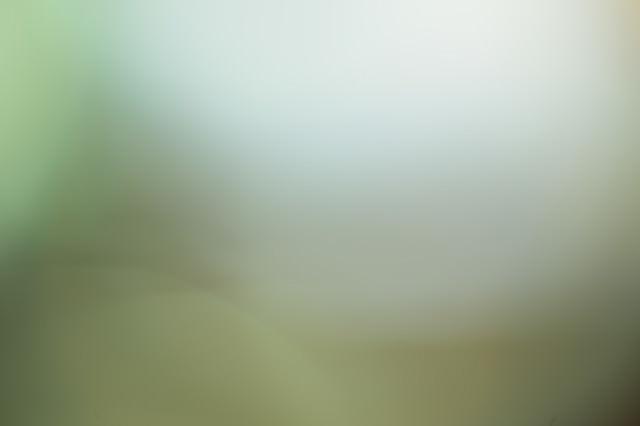 薄暗い濁った背景の写真